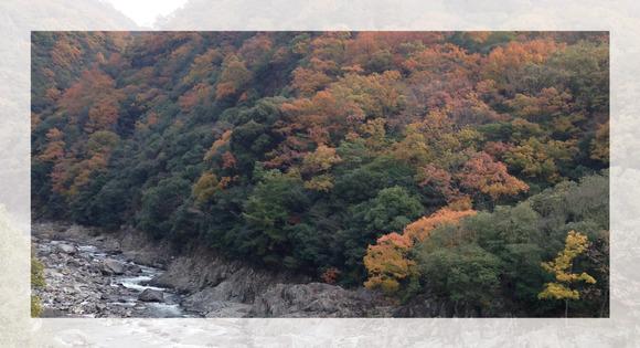 名塩川橋梁付近