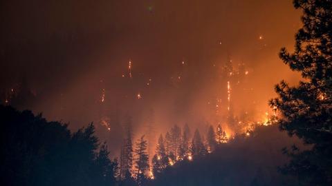 【米オレゴン州】森に花火を投げ入れ194平方キロを焼失させた15歳の少年に40億円の賠償命令 ((((;゚Д゚))))