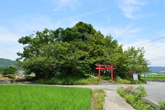 弁天山 (徳島市) 全景