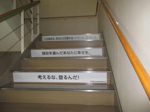 青森県庁の階段