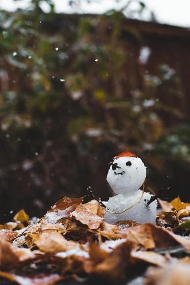 snow bowl