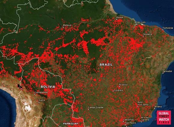 アマゾン森林火災