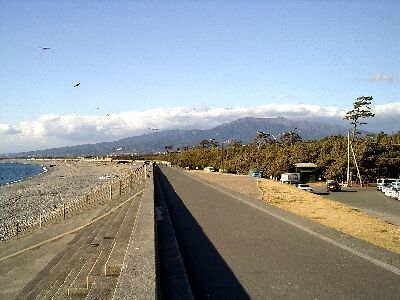 千本浜の防潮堤と千本松原