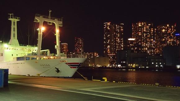夜の竹芝桟橋