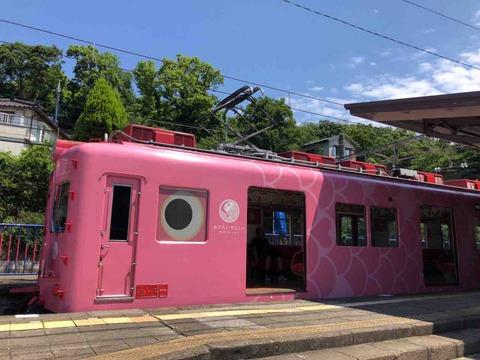 めでたい電車に乗って加太へ