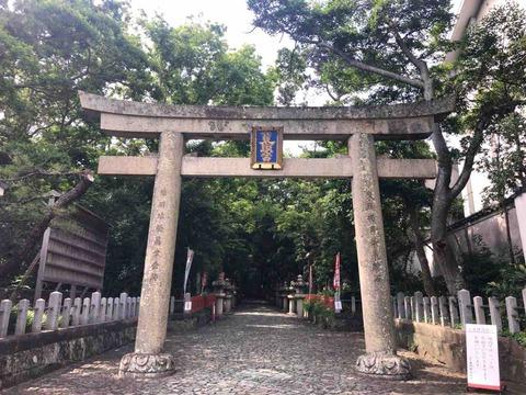 和歌の浦 豪華な装飾に彩られた紀州東照宮は絶好のビュースポット