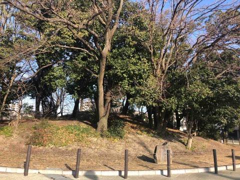 堺市にある古墳の魅力を伝え隊・第17回 百舌鳥古墳群巡りをしたら最初に出逢う古墳『収塚古墳』