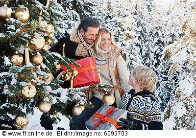 Weihnachten_3794_893