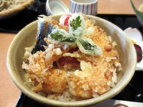 諏訪屋天ぷら丼と蕎麦3