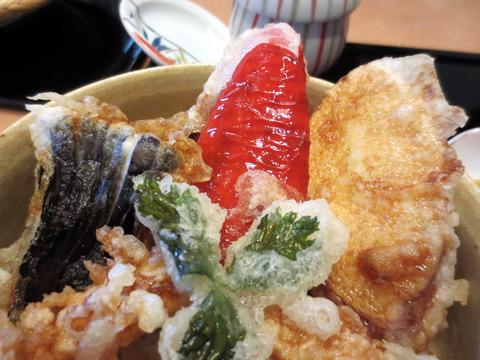 諏訪屋天ぷら丼と蕎麦5