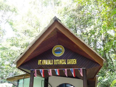 キナバル公園24