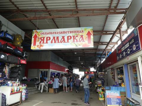 キタイスキー市場 (4)