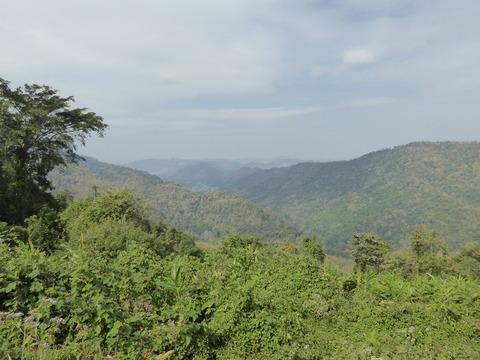 カオヤイ国立公園31