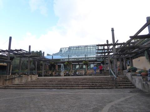 カーステンボッシュ植物園 2