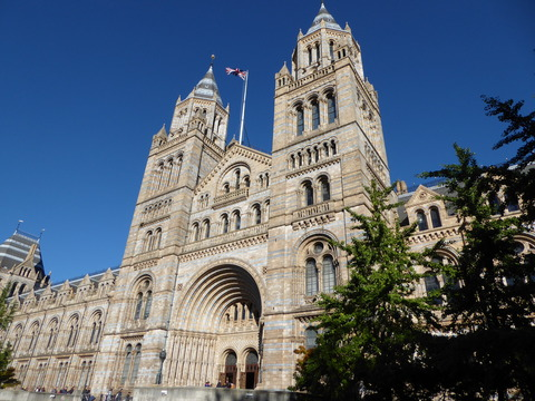 Natural History Museum (2)