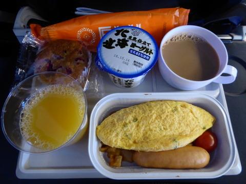 Fiji Airways (7)