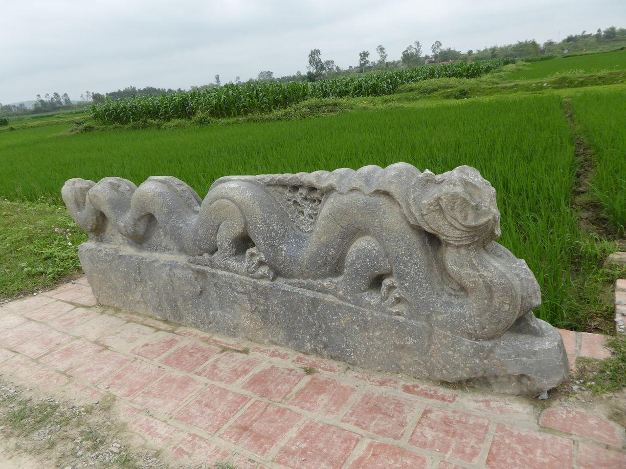 胡朝の城塞の画像 p1_35