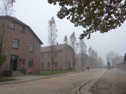 Auschwitz (18)