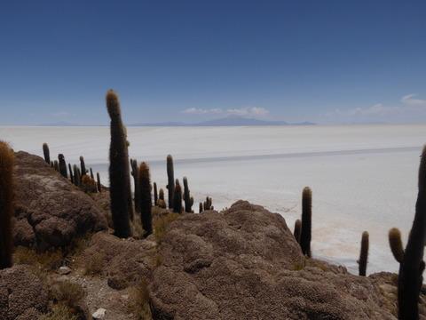 インカ・ワシ島3
