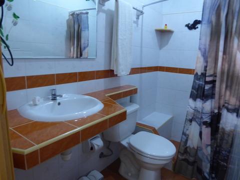 casa verde3709 (3)
