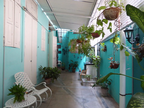 casa verde3709 (2)
