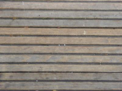 遊歩道 (3)雪