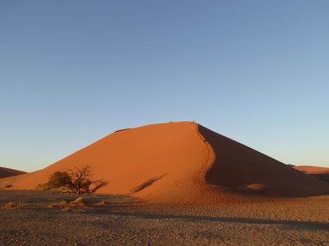ナミブ砂漠 2