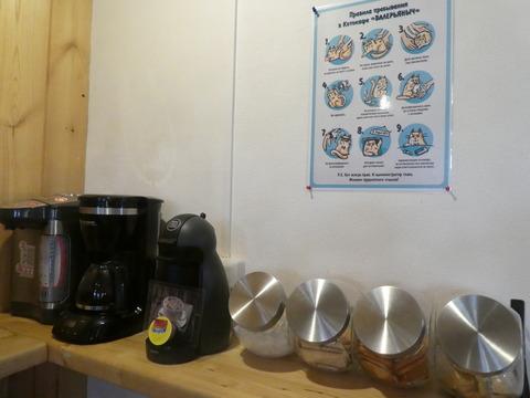猫カフェ (11)