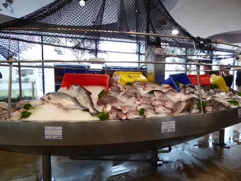 Auckland fish market (9)
