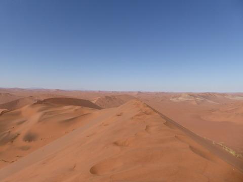ナミブ砂漠 18