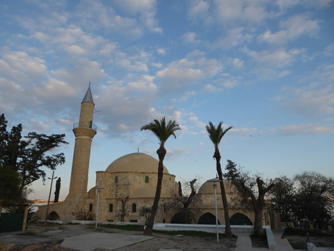 Hala Sultan Mosque (10)