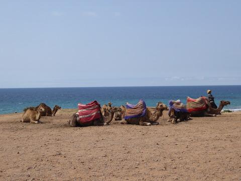 タンジェのビーチ