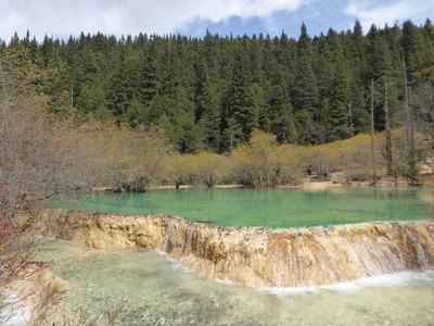 盆景池 (2)