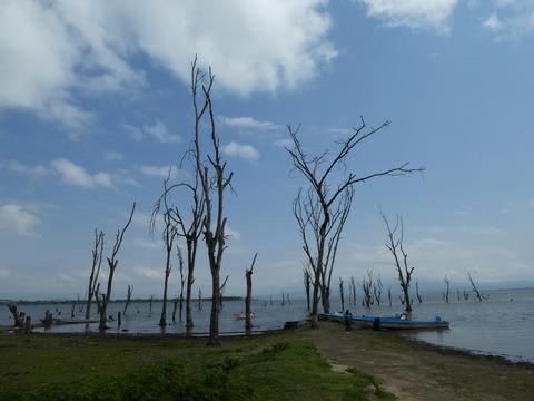 ナイバシャ湖 (3)