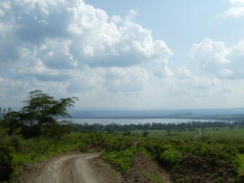 ナクル湖 (5)