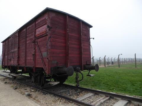 Birkenau (12)