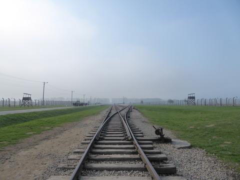 Birkenau (49)
