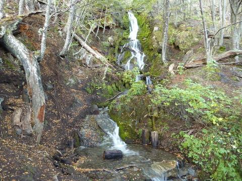 ティエラ・デル・フエゴ国立公園 (53)