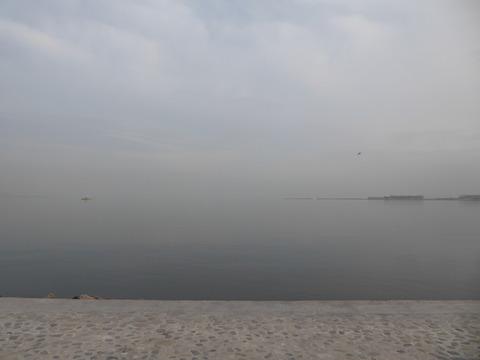 海岸公園(5)