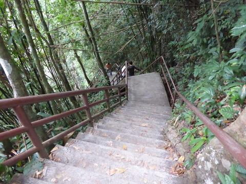 カオヤイ国立公園13