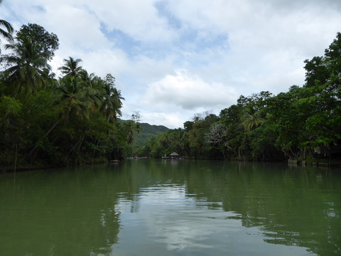 Loboc River Lunch Cruise (7)