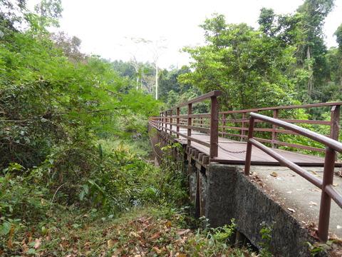 カオヤイ国立公園4