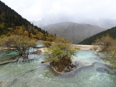 娑羅映彩池