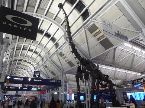 シカゴ空港 (2)
