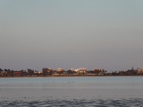 ソルト湖 (7)