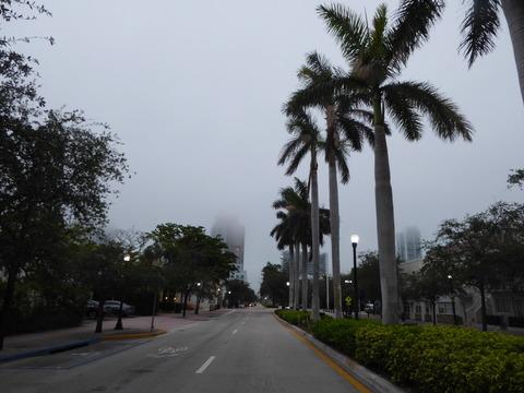 マイアミビーチ (1)