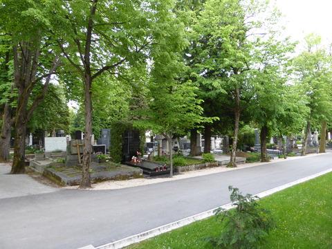 ミロゴイ墓地 (26)