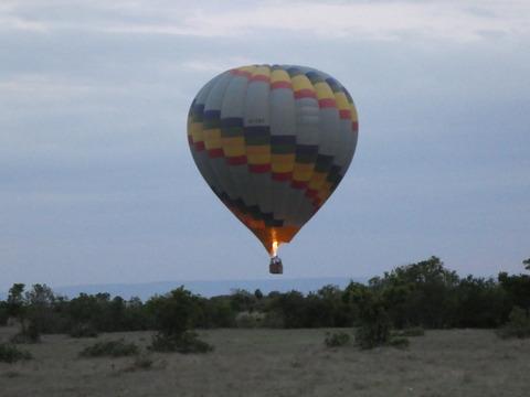 マサイマラ国立保護区 (4)