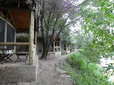 Fig Tree Camp (33)