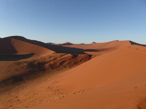 ナミブ砂漠 3